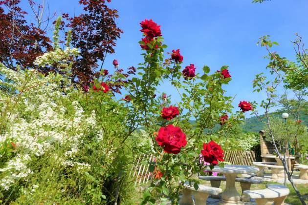 accueil en fleur